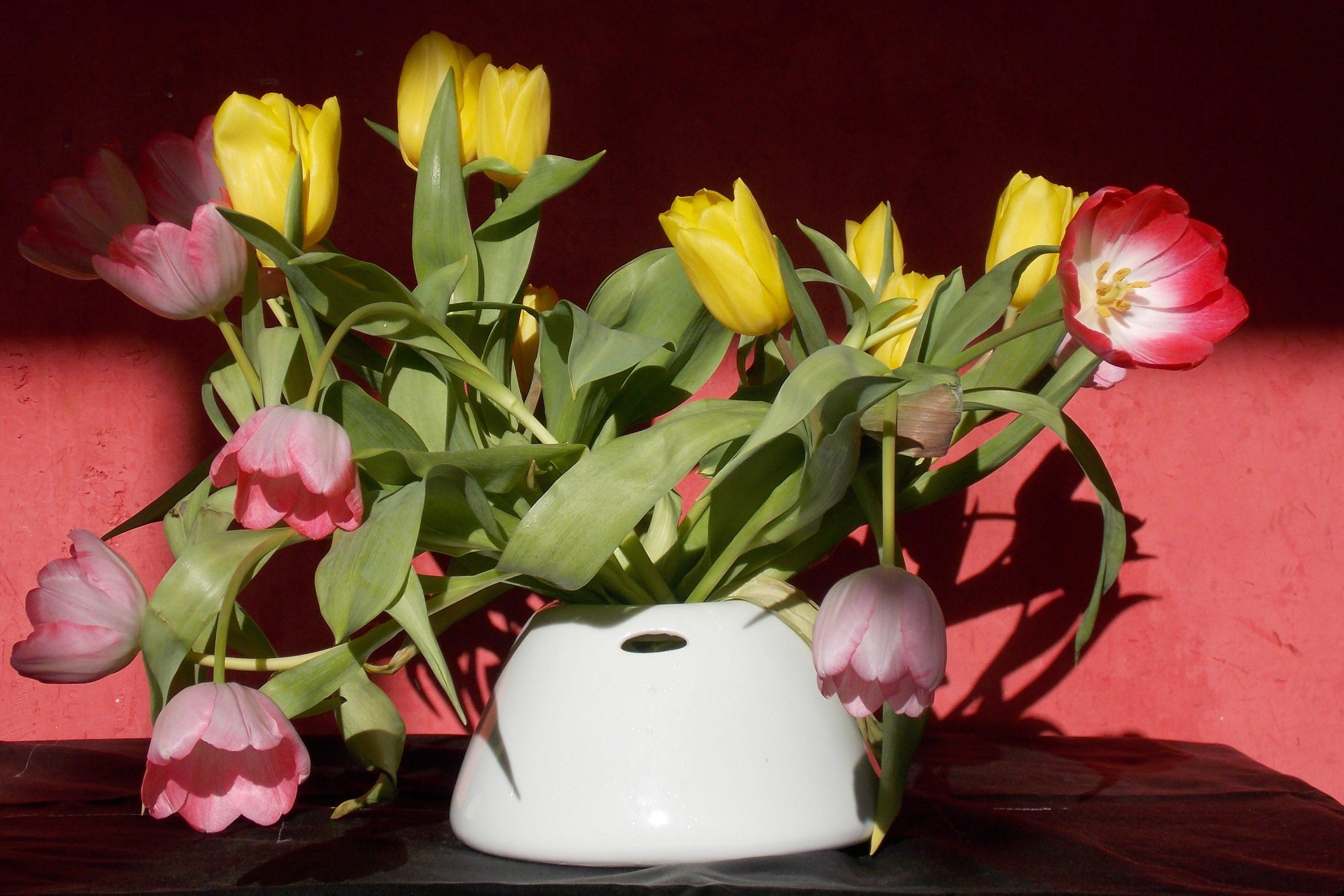 Niedrig est un vase en porcelaine blanche fabriqué en Bretagne de façon artisanale